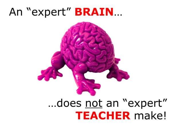 Expert Brains