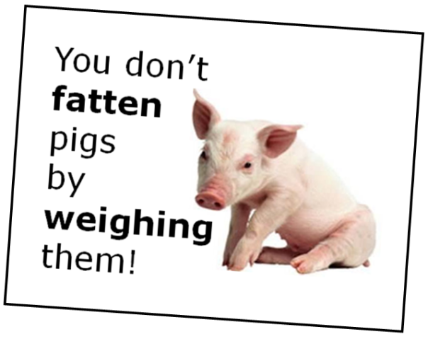 Fattening pigs (assessment)