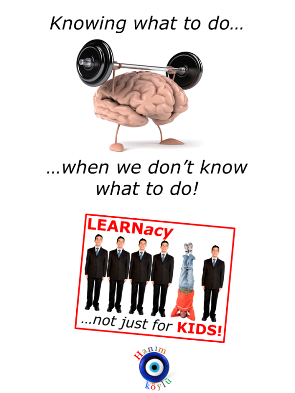 LEARNacy (new ver TG)