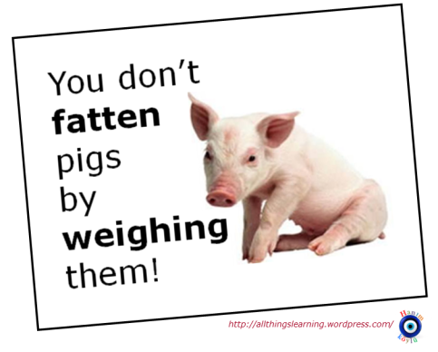 Assessment (fattening pigs)