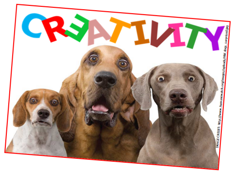 Creativity and My Dogs