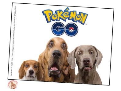 Pokemon Dogs TG ver 130716